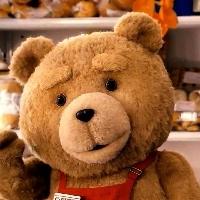 一只泰迪熊